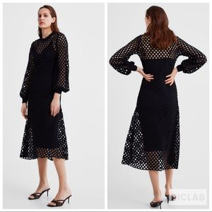 NWT • Zara • Dress with Mesh Trim